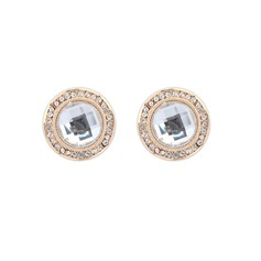 Classic Alloy/Acrylic Ladies' Earrings