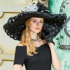 Dames Unique Organza avec Feather Disquettes Chapeau