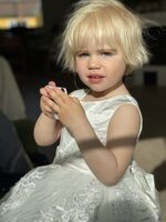 Ball-Gown/Princess Knee-length Flower Girl Dress - Satin/Lace Sleeveless Scoop Neck With Bow(s) (Undetachable sash) (010220934)