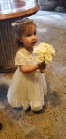 Ball Gown Floor-length Flower Girl Dress - Tulle/Charmeuse/Lace Short Sleeves Scoop Neck With Bow(s) (010136611)