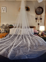 One-tier Cut Edge Cathedral Bridal Veils With Faux Pearl (006230035)