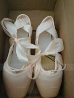 Women's Satin Pointe Shoes Dance Shoes (053123208)