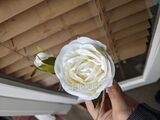 Satin Boutonniere (Sold in a single piece) - (123170925)