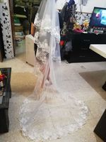 One-tier Lace Applique Edge Cathedral Bridal Veils With Applique (006036776)