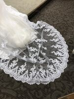 One-tier Lace Applique Edge Cathedral Bridal Veils With Lace (006141336)
