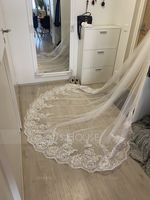 One-tier Lace Applique Edge Cathedral Bridal Veils With Lace (006183213)