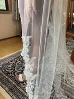 One-tier Lace Applique Edge Chapel Bridal Veils With Lace (006227449)