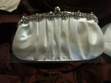 Fashionable Silk Clutches/Bridal Purse/Evening Bags (012011035)