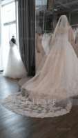 One-tier Lace Applique Edge Cathedral Bridal Veils With Applique (006089553)