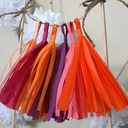 Simple/Classic/Nice Tassels Design Paper Wedding Ornaments (set of 5)