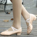 Women's Flats Ballet Dance Shoes