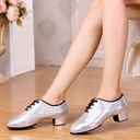 Women's Leatherette Heels Pumps Swing Practice Dance Shoes