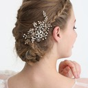 Ladies Special Rhinestone/Alloy/Imitation Pearls Hairpins With Rhinestone/Venetian Pearl (Sold in single piece)