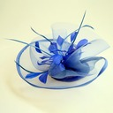 Ladies' Beautiful Feather/Net Yarn/Rhinestone Fascinators