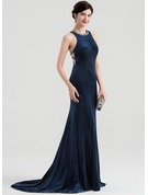 Trumpet/Mermaid Scoop Neck Sweep Train Velvet Evening Dress With Beading Sequins