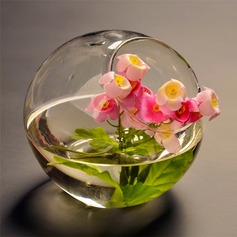 Diameter 12cm Beautiful Simple Glass Vase/Ornament (Sold in a single piece)