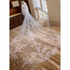 Two-tier Lace Applique Edge Cathedral Bridal Veils With Lace (006163739)