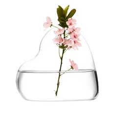 Heart Shaped Glass Vase (128048472)