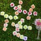 Colorful/Lovely Single Flower Fabric Decorations (set of 12)