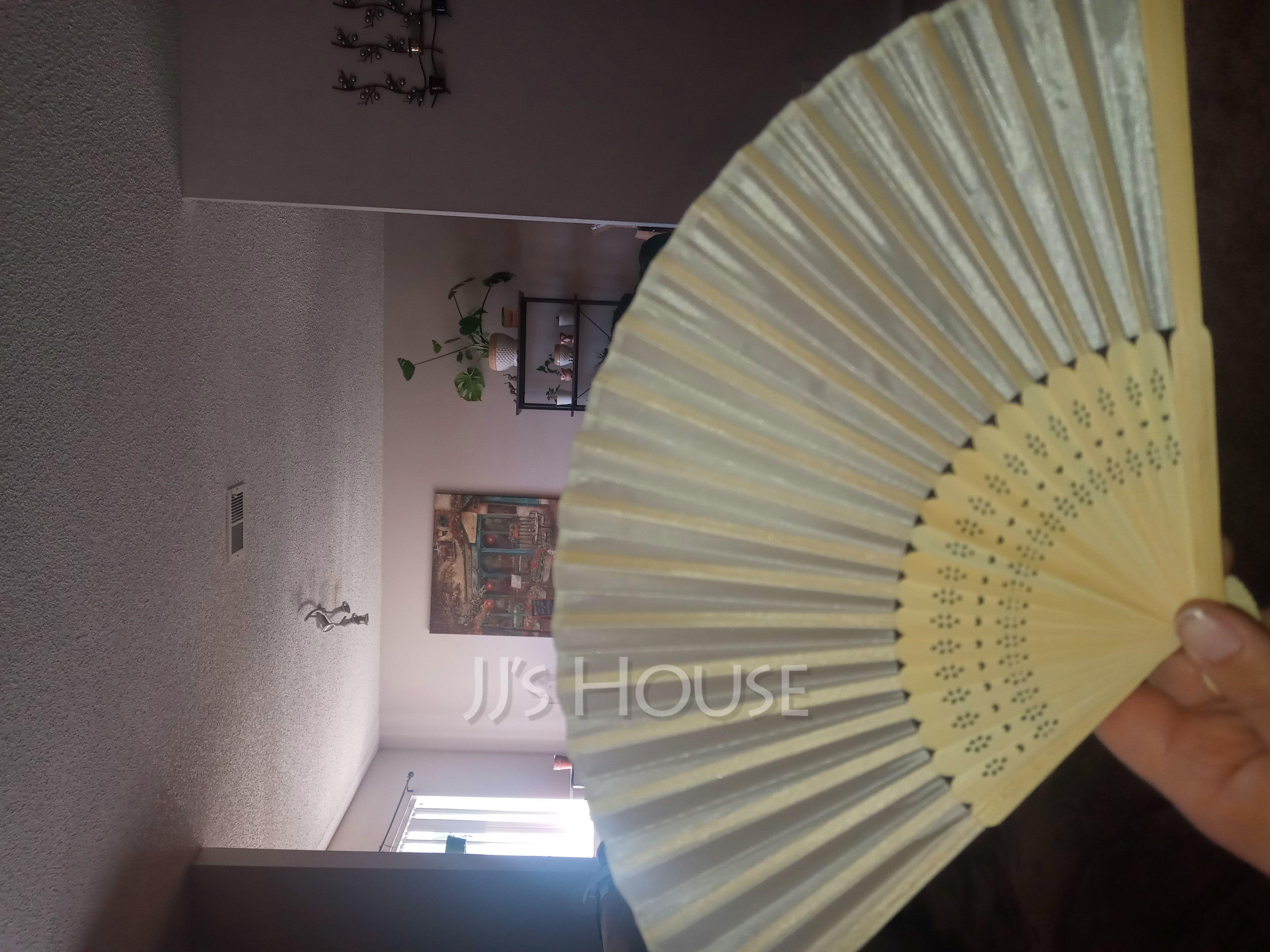Simple Bamboo Hand fan